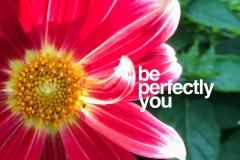 PerfectlyYou